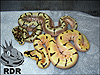 2013 Enchi Spider ( top ) 2013 B/R Tangerine Enchi Spider ( below )